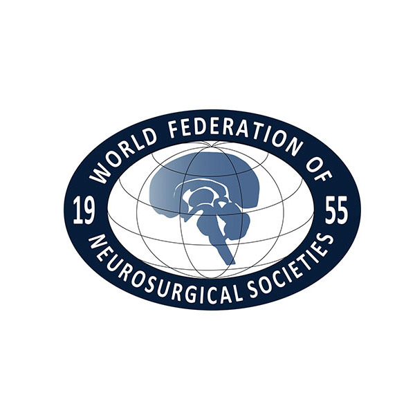 Formation of WFNS Global Neurosurgery Committee, Gail Rosseau and William Harkness invited members
